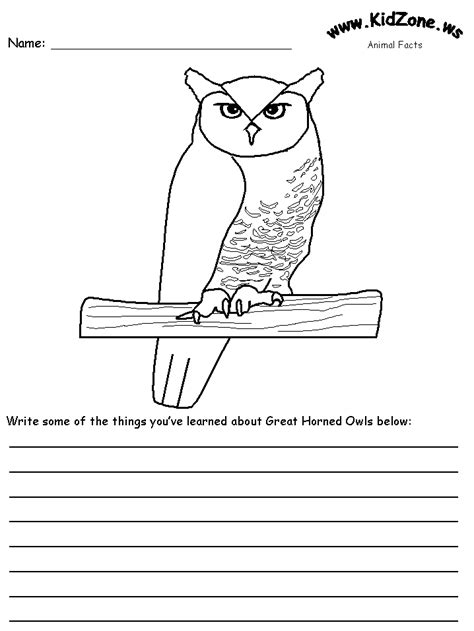 owl printables for kindergarten crafters great horned owl bird house plans info