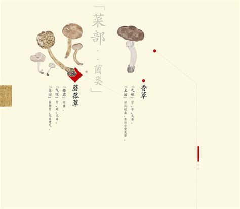 chinese book layout design traditional chinese medicine vi book design on behance