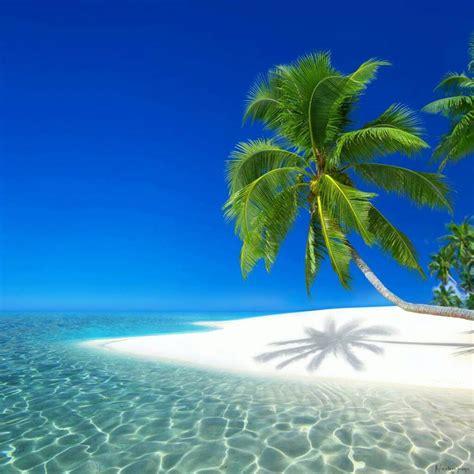 Iles Paradisiaques Du Monde 3470 iles paradisiaques du monde plong e sous marine les iles