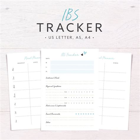 printable food journal for allergies ibs tracker food diary allergy diet tracker meal