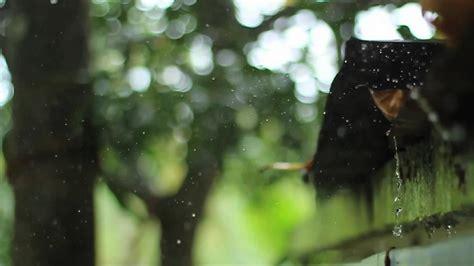 rainfall can release aerosols study finds mit news 雨上がりに発生する独特のにおいの原因をハイスピードカメラで水滴を観察することで科学的に解明 gigazine