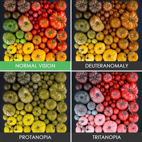 do blind in color you ll be surprised how with color blindness see