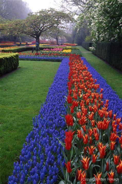 Lu Taman Bola perfection keukenhof gardens