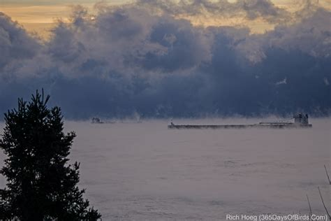 lake superior sea smoke sea smoke ship sunrise over lake superior 365 days of birds