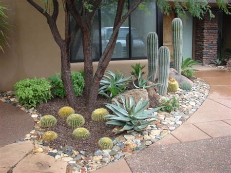 Desert Backyard Landscaping Ideas Best 25 Arizona Landscaping Ideas On Xeriscaping Plants Drought Tolerant And