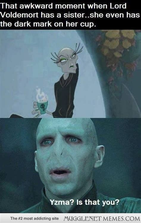 Voldemort Meme - voldemort s sister harry potter memes and funny pics