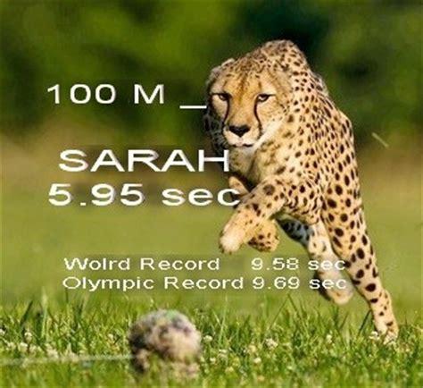how fast can a run how fast can a cheetah run a 100 meter dash quora