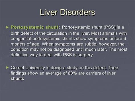yorkie liver shunt symptoms genetic disorders terrier