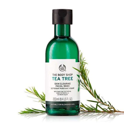 The Shop Tea Tree tea tree skin clearing wash 8 4 fl oz