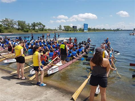 montreal dragon boat 2017 phoenix warriors montreal chan dragon boat sports club