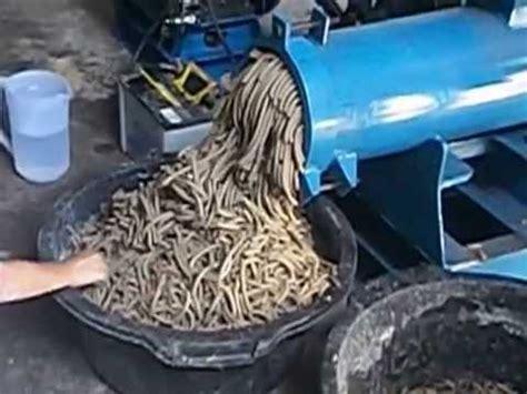 Mesin Giling Limbah Ikan uji coba mesin pelet kayu doovi