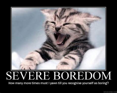 Bor Edon social media a reunion with boredom by charles simic