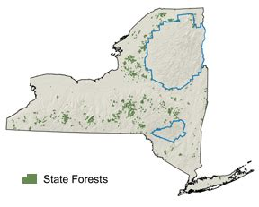 list of state forests nys dept of environmental state forests nys dept of environmental conservation