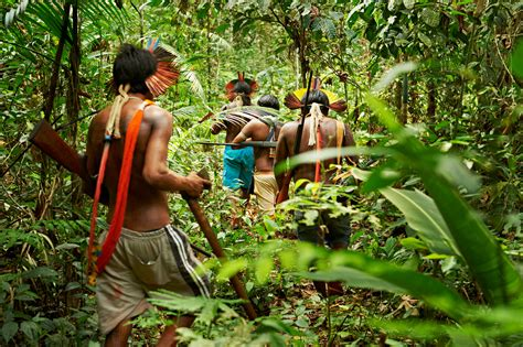 amazon tribe rain forest warriors how indigenous tribes protect the amazon