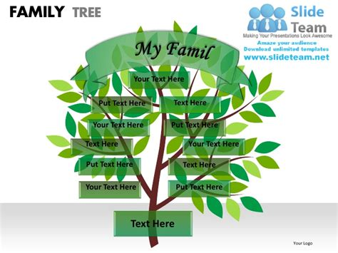 powerpoint family tree template family tree powerpoint presentation slides ppt templates