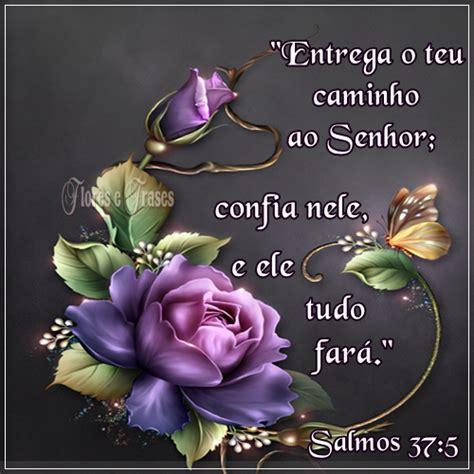 frases de rosas frasesypensamientoscomar flores e frases salmos 37 5