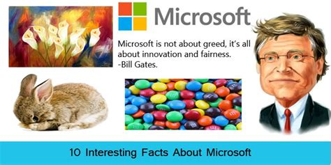 8 Facts On Microsoft interesting facts about microsoft windows