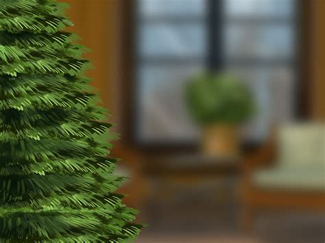 cat proof tree 3 ways to cat proof your tree wikihow