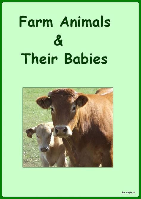 Mainan Aninal Farm Babi 80 best images about farm theme on teaching circle time and