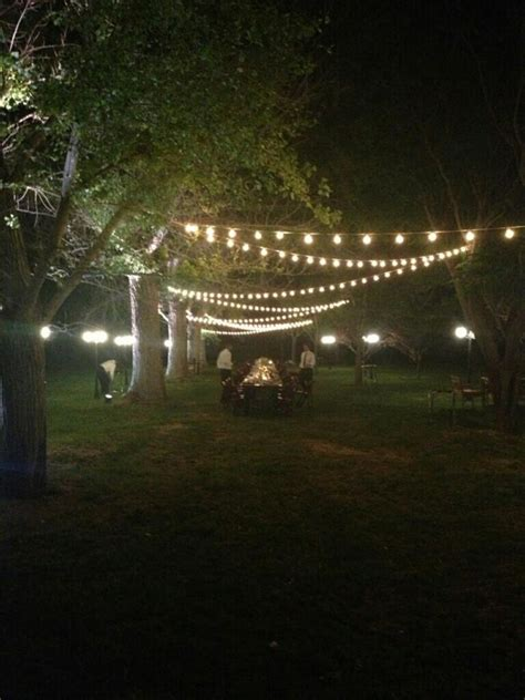 Festoon Outdoor Lights Festoon Lighting Outdoor Orchard Teddy Bears S Picnic Pinterest Gardens Garden