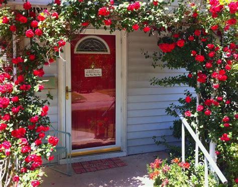 gardening on the porch pruning 71 best garden images on gardening beautiful