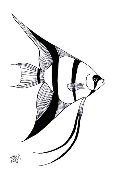 pin angel fish coloring page httpvectorsdesignvector of a