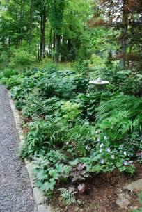 halbschatten garten shade garden ideas photograph this shade garden was d