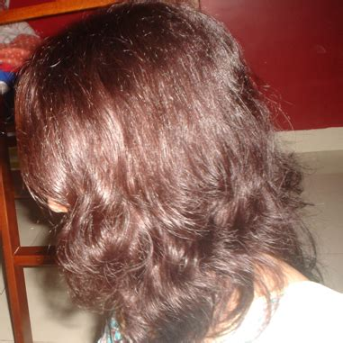 crazy hair colour loreal inoa hair color hair dye color l oreal professionnel inoa hair colour review