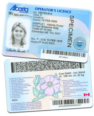boat driving licence ireland driver s license learners licenses chaparral license