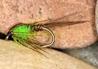 caithness flies nymphs