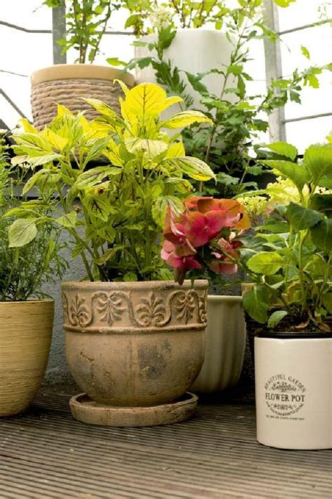 Balcony Garden Planters by Patio And Balcony Planter Ideas