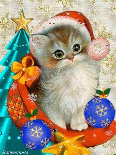 obrazki  kotkami magia swiat bozego narodzenia zyczenia swiateczne zyczenia bozonarodzeniowe