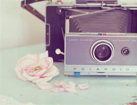 vintage polaroid still photography vintage polaroid photo pink by