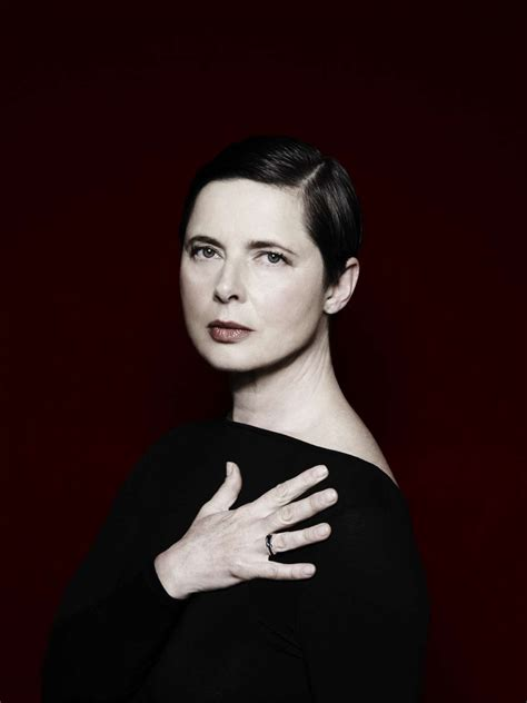 isabella rossellini to guest star on nbc s the blacklist isabella rossellini foto televisionando