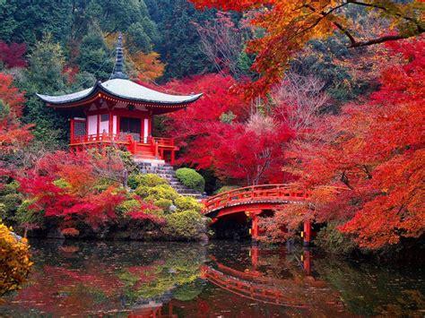 travel mondays garden of saiho ji in kyoto japan1966 magazine