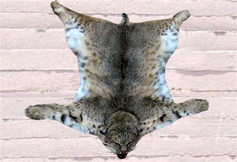 bobcat rug second marketplace rug bobcat skin