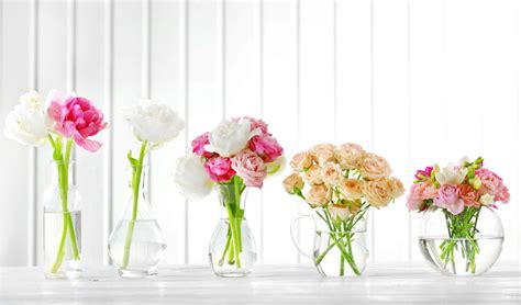 vasi per fiori recisi fiori recisi servizi salmaso salmaso vivai creative
