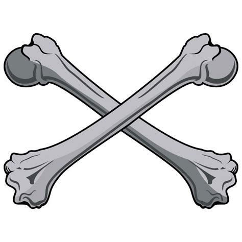 eps clipart bones vector clip at vectorportal