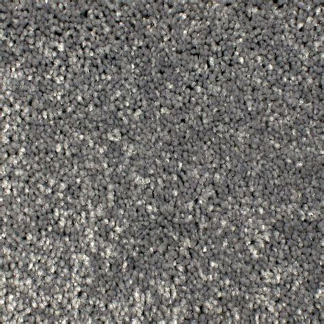 Home Decorators Carpet Home Decorators Collection Carpet Sle Gracious Manner Ii Color Radiant Texture 8 In X 8