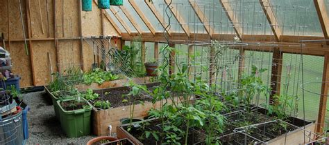 greenhouse bedroom raised bed greenhouse 28 images raised bed gardens with greenhouses cold frame