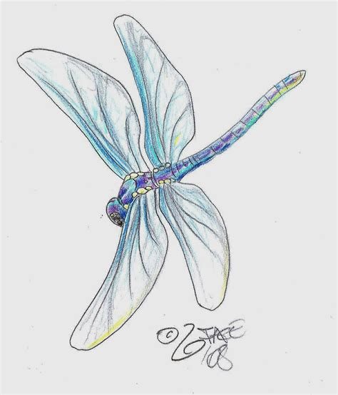 small dragonfly tattoos small dragonfly tattoos for amazing dragonfly