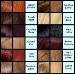 feria color chart hairstylegalleries