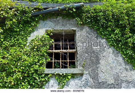 derelict house for sale stock photos derelict house for