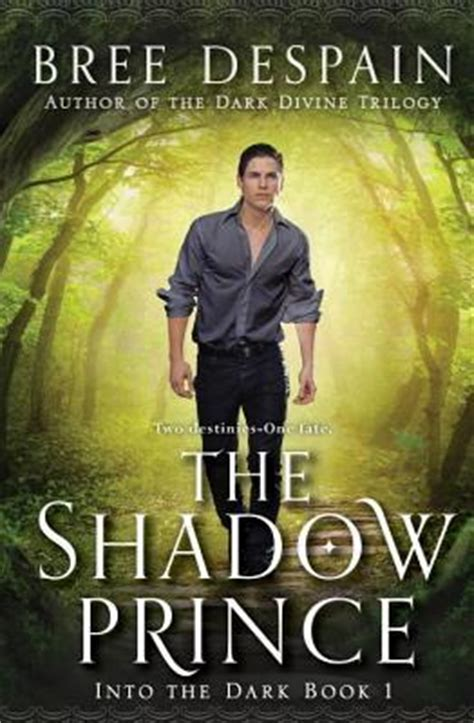 into the darkness mitch book 2 books into the book 1 the shadow prince despain