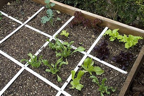 square foot vegetable gardening how to build a vegetable garden for beginners