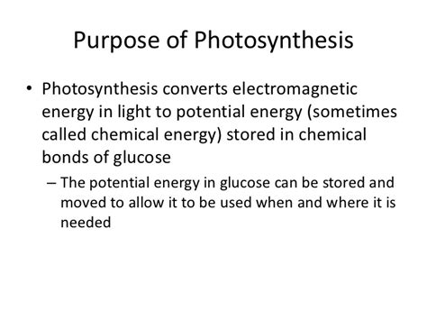 what is the purpose of a light dependent resistor in a circuit photosynthesis light dependent reactions