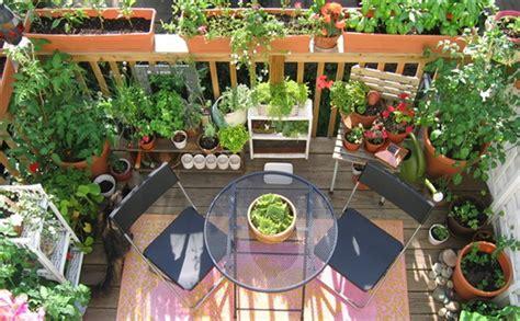 giardino sul balcone il giardino sul balcone in poche mosse