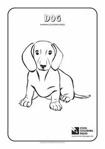 Mammals coloring pages cool coloring pages part 2