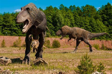 film met dinosaurus de dinosaurus de soorten het tijdperk en de extinctie