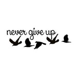 25 best ideas about tattoo never give up on pinterest